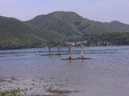 Rimg3002_torii_sea