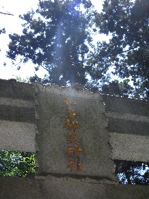 Rimg3024_torii_name