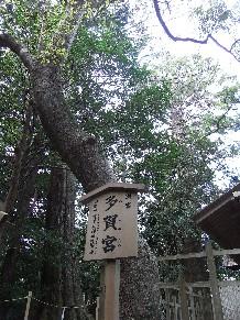 Rimg0038tagamiya_kanban