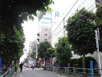 Rimg0011tochinoki_hukei