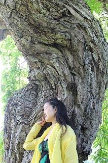 Simg_9128kokoro_tree_rieko